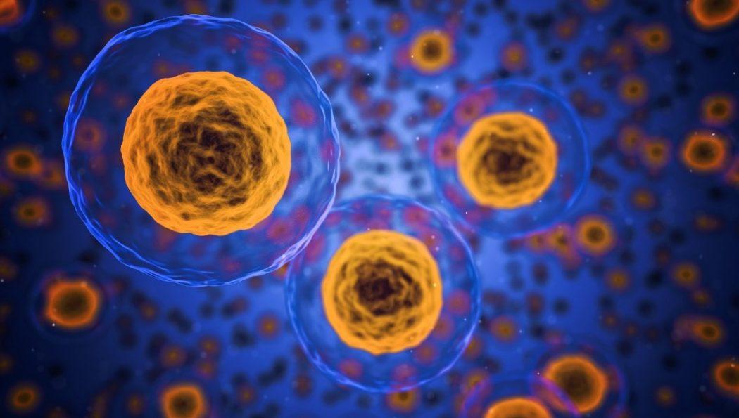 Investigadores del CSIC desarrollan microdispositivos que distinguen las células tumorales de las sanas